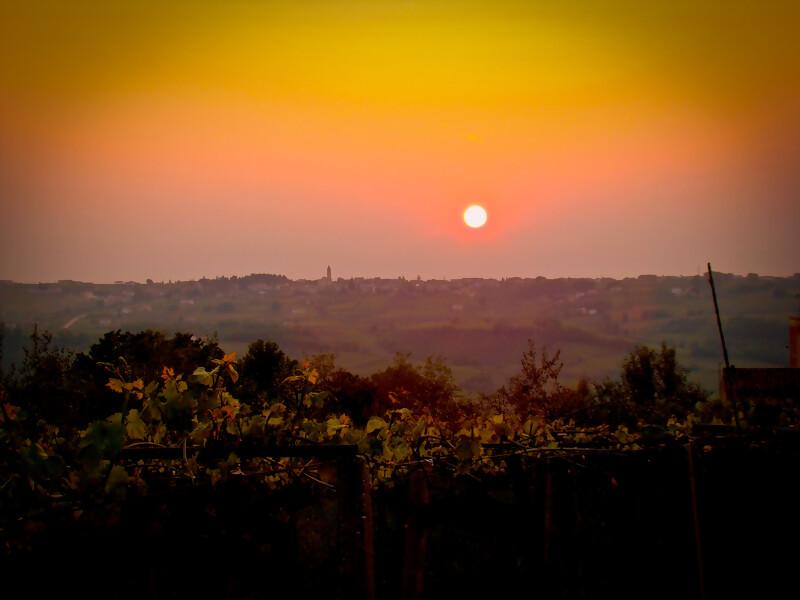 Weinanbaugebiet Babalù Sonnenuntergang